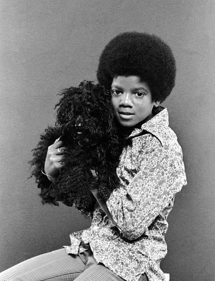Michael Jackson with dog jackson 5 trumbull island